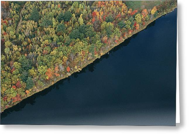 An Aerial View Of A Forest In Autumn Greeting Card by Heather Perry