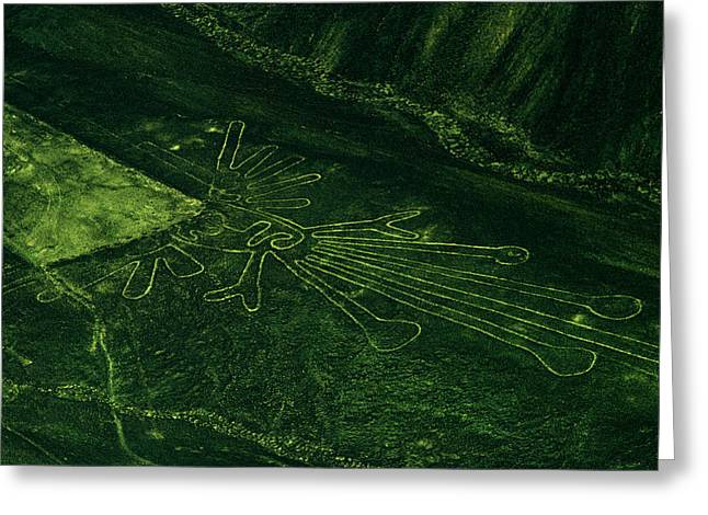 Pre Columbian Architecture And Art Greeting Cards - An Aerial View Of The Nazca Lines. They Greeting Card by Bates Littlehales