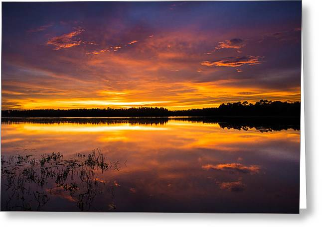 Lake House Greeting Cards - An Array Of Colors Greeting Card by Parker Cunningham