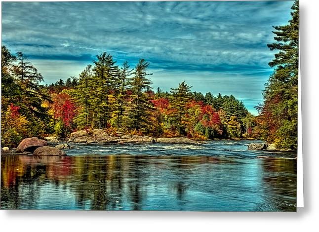 The Trees Greeting Cards - An Autumn Day on the Moose River Greeting Card by David Patterson