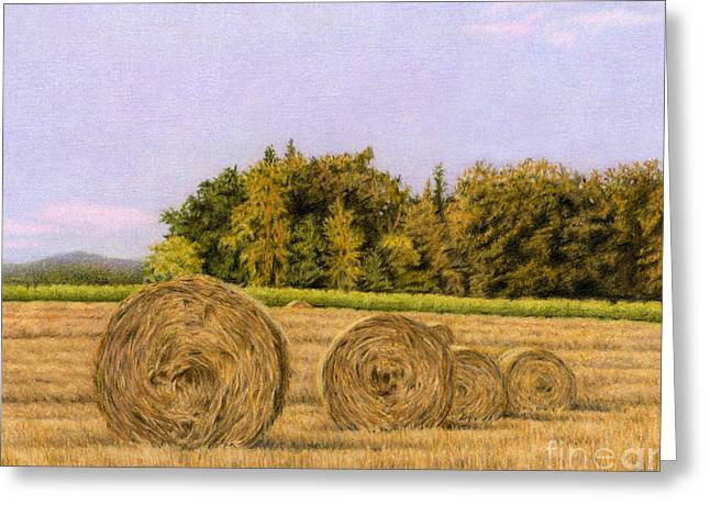 An Autumn Evening Greeting Card by Sarah Batalka