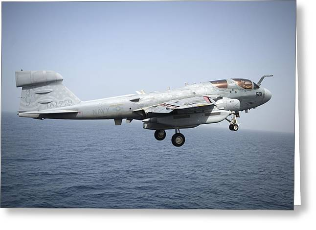 Navy Greeting Cards - An EA-6B Prowler  Greeting Card by Celestial Images