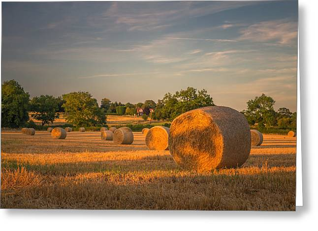 Hay Bales Greeting Cards - An evening amongst the hay Greeting Card by Chris Fletcher