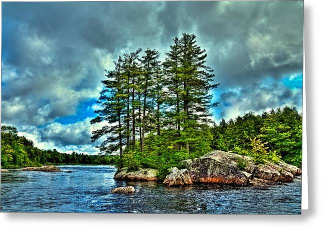 The Trees Greeting Cards - An Island on the Moose River Greeting Card by David Patterson