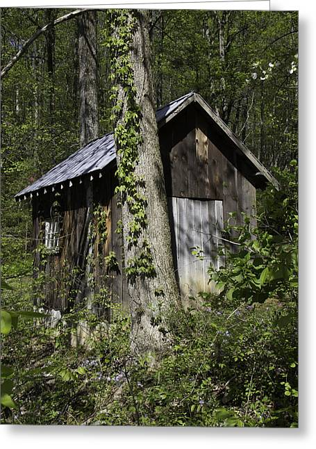 Roanoke Greeting Cards - An Old Shed at Happy Hollow Gardens Greeting Card by Teresa Mucha