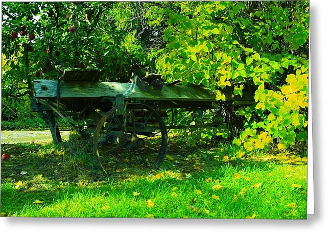 Old Wagons Greeting Cards - An old wagon Greeting Card by Jeff  Swan