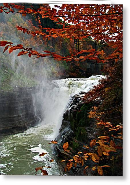 Western New York Greeting Cards - An Upper Letchworth Autumn Greeting Card by Lianne Schneider