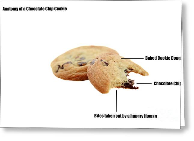 Cut-outs Digital Art Greeting Cards - Anatomy of a Chocolate Chip Cookie Greeting Card by Michael Ledray