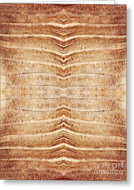 Sienna Greeting Cards - Ancient Lines 5 Greeting Card by Sarah Loft