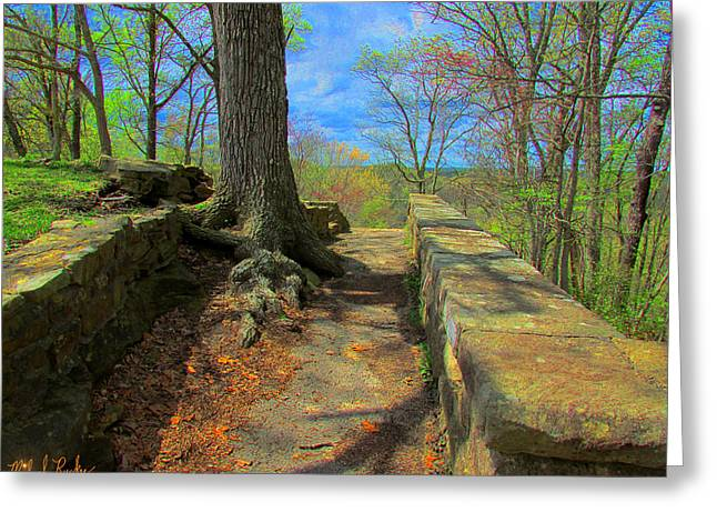 Tree Roots Greeting Cards - Ancient Pathway Greeting Card by Michael Rucker