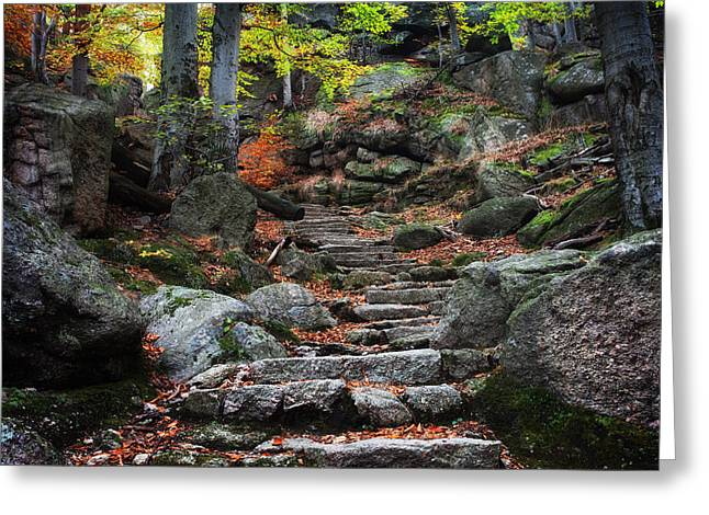 Ancient Stairs In Mountain Forest Greeting Card by Artur Bogacki