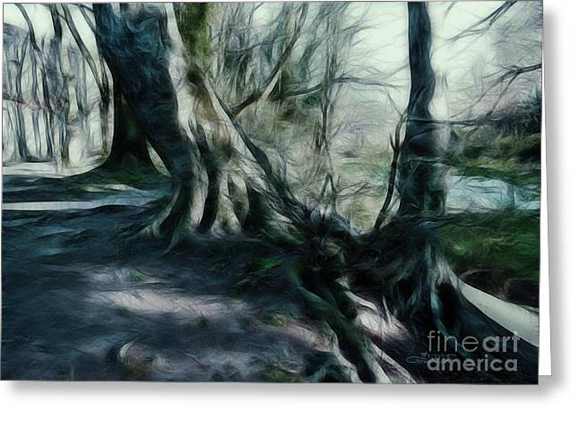 Postwork Greeting Cards - Ancient Tree Giants Greeting Card by Jutta Maria Pusl