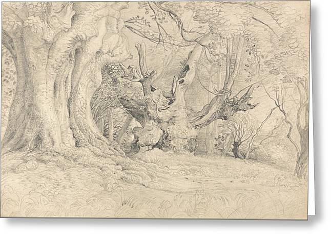 Ancient Trees, Lullingstone Park Greeting Card by Samuel Palmer
