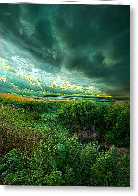 And For A Moment It Was Silent Greeting Card by Phil Koch