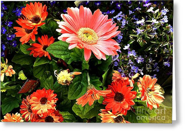 Photorealism Greeting Cards - And I Give You Color Greeting Card by Charlie Spear