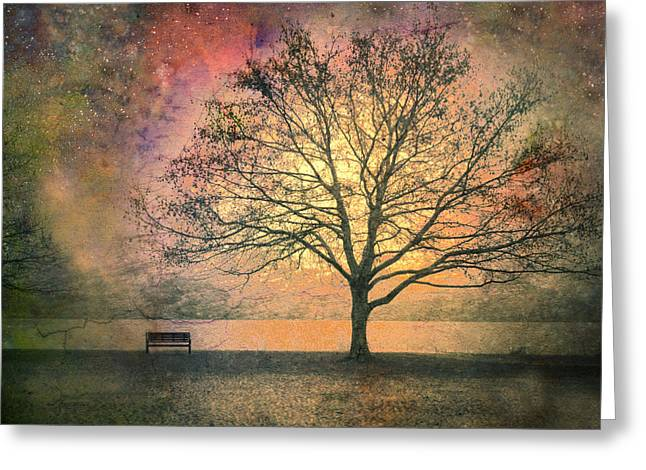 Benches Greeting Cards - And the Morning is Perfect in all Her Measured Wrinkles Greeting Card by Tara Turner