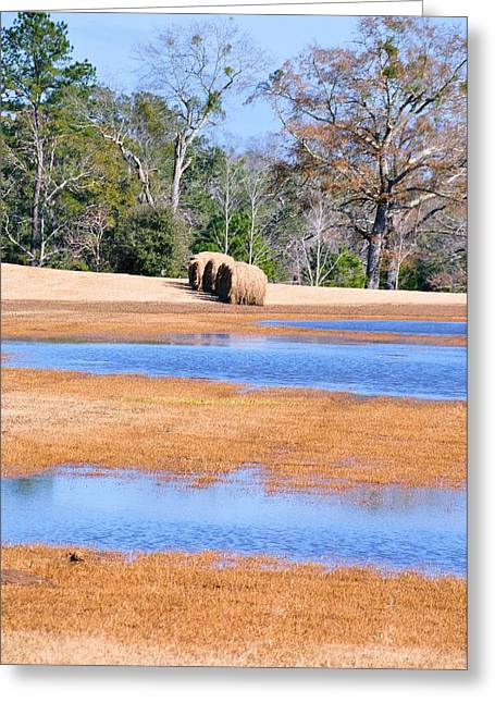 Hay Bales Greeting Cards - And The Sun Will Shine Greeting Card by Jan Amiss Photography