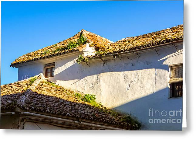 Andalusian Greeting Cards - Andalusian Roofs Greeting Card by Lutz Baar