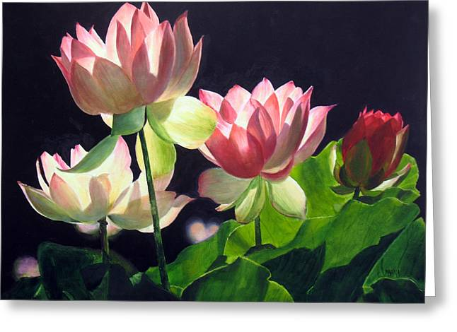 Water Lilly Greeting Cards - Andreas Lillies Greeting Card by Marina Petro