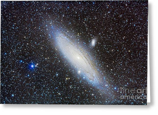 Ngc 224 Greeting Cards - Andromeda Galaxy With Companions Greeting Card by Alan Dyer