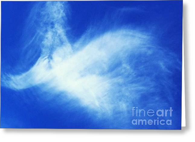 Angel Blues Greeting Cards - Angel In The Clouds Original Photo Greeting Card by Nan Hand