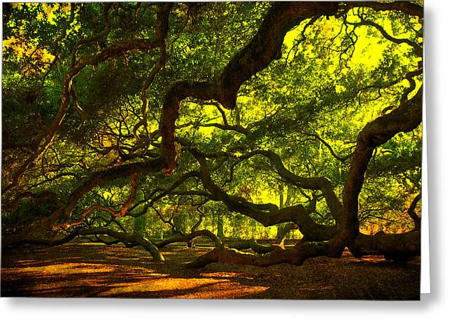 Angel Oak Limbs 2 Greeting Card by Susanne Van Hulst
