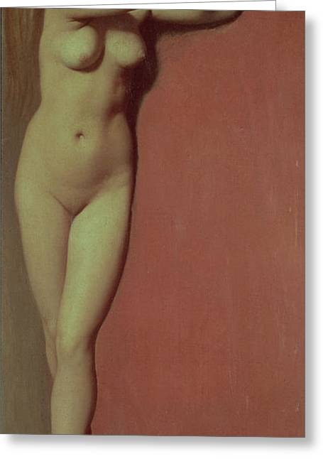 1780 Greeting Cards - Angelique Greeting Card by Jean Auguste Dominique Ingres