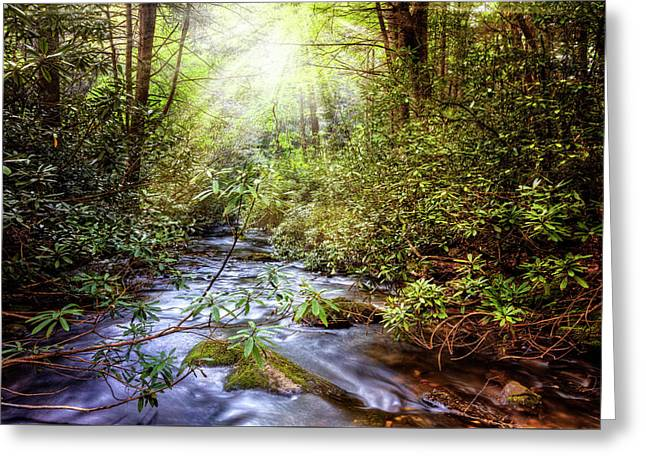 Angels In The Forest Greeting Card by Debra and Dave Vanderlaan