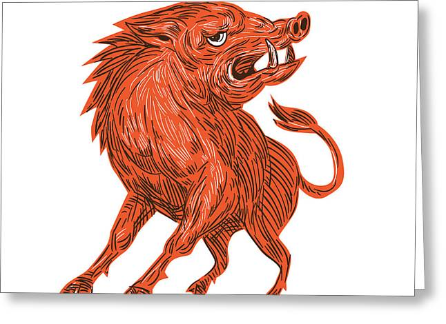 Angry Razorback Ready To Attack Drawing Greeting Card by Aloysius Patrimonio