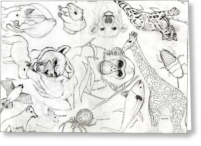 Madagascar Drawings Greeting Cards - Animal Collage Greeting Card by Gerard  Schneider Jr