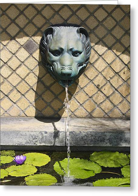 Lilly Pad Greeting Cards - Animal Fountain Head Greeting Card by Teresa Mucha