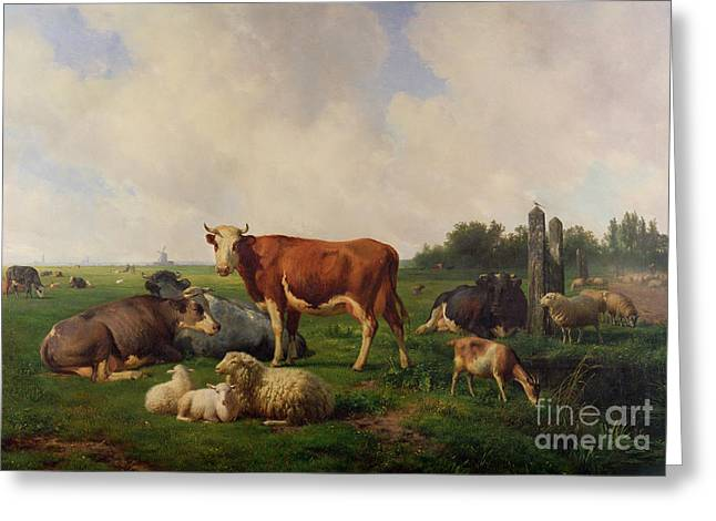 Meadow Scene Greeting Cards - Animals Grazing in a Meadow  Greeting Card by Hendrikus van de Sende Baachyssun