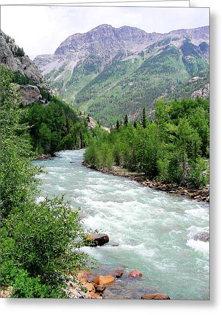 Colorado Nature Landscape Greeting Cards - Animas Greeting Card by Peter  McIntosh