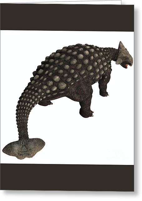 Ankylosaurus Isolated Greeting Card by Corey Ford