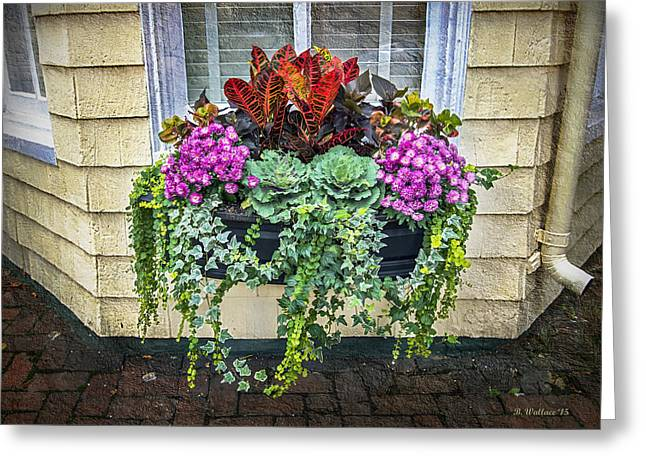 Historic Home Greeting Cards - Annapolis Flower Box Greeting Card by Brian Wallace