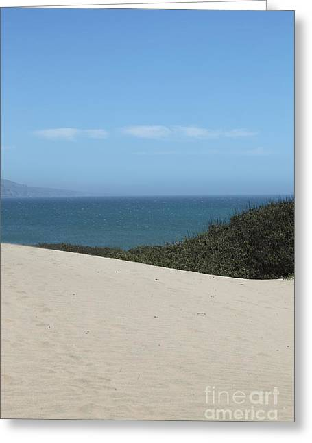 Ano Nuevo Photographs Greeting Cards - Ano Neuvo Greeting Card by Amanda Barcon
