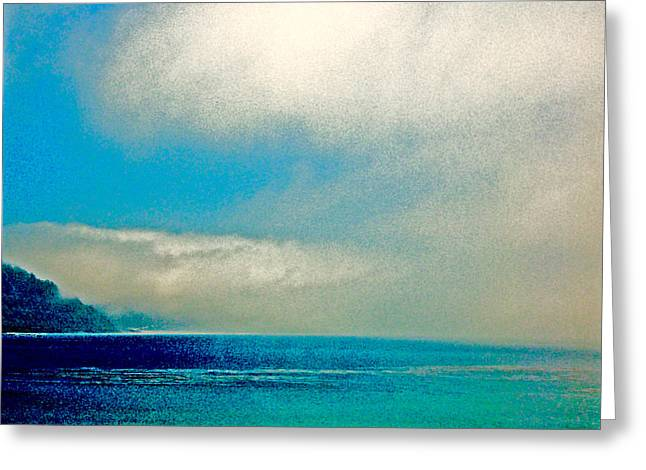 Ano Nuevo Fog 2 Greeting Card by Scott L Holtslander