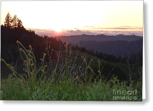 Sillouette Greeting Cards - Another Beautiful Day Greeting Card by JoAnn SkyWatcher