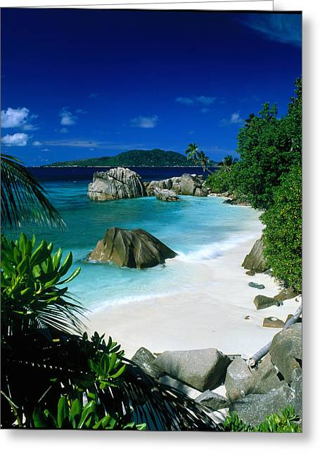 Frond Greeting Cards - Anse Patatran La Digue Seychelles Greeting Card by Panoramic Images