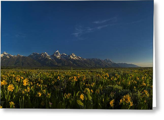 Teton Greeting Cards - Antelope Flats Greeting Card by Noah Bryant