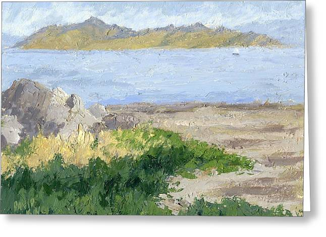Impressionist Greeting Cards - Antelope Island from Black Rock Greeting Card by David King