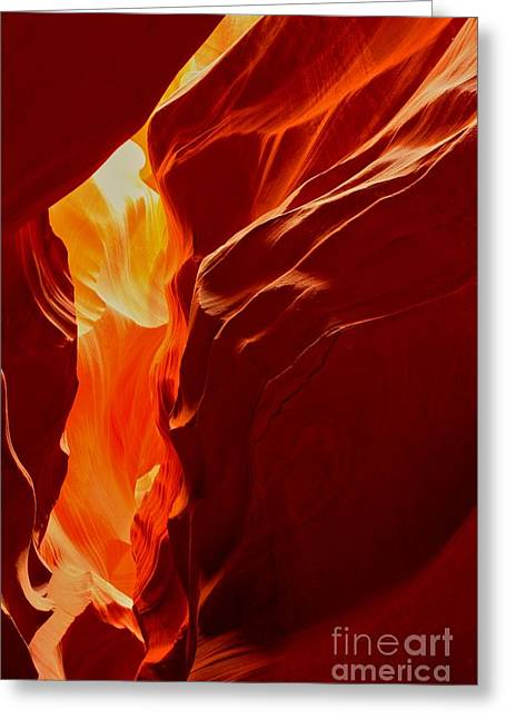 Antelope Textures And Flames Greeting Card by Adam Jewell