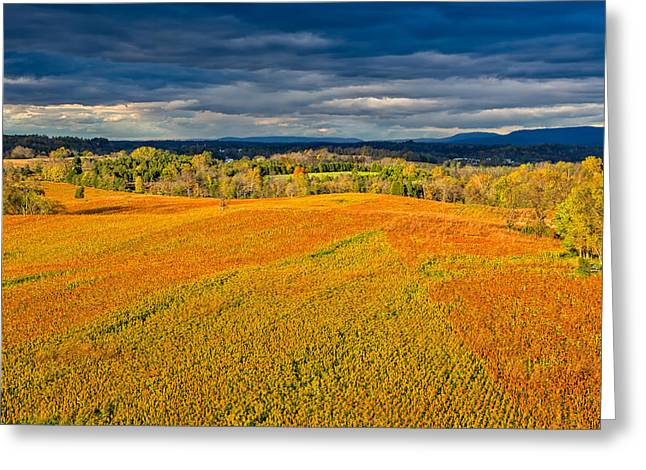 Historic Site Greeting Cards - Antietam Cornfields Greeting Card by John Bailey
