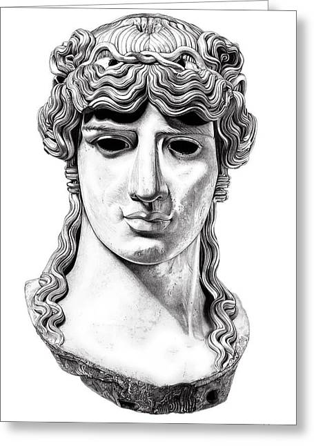 Greek Sculpture Sculptures Greeting Cards - Antinous _ V1 Greeting Card by Bruce Algra