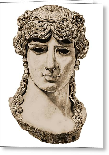 Greek Sculpture Sculptures Greeting Cards - Antinous _ V3 Greeting Card by Bruce Algra