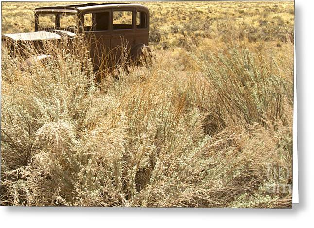 Ford Model T Car Greeting Cards - Antique Car in Grasses Greeting Card by Karen Foley