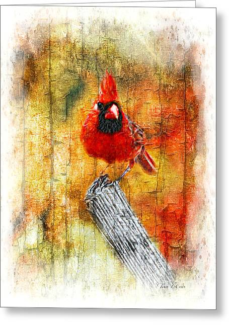 Northern Cardinal Photo Greeting Cards - Antique Northern Cardinal Greeting Card by Tina  LeCour