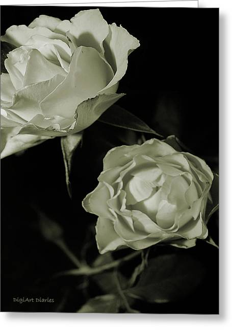 Olive Green Greeting Cards - Antique Roses Greeting Card by DigiArt Diaries by Vicky B Fuller