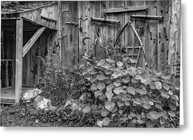 Saw Greeting Cards - Antique Tools - bw Greeting Card by Steve Harrington