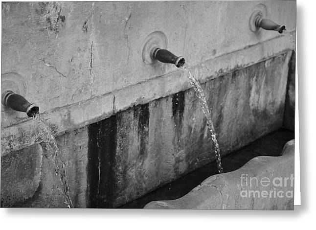 Stream Greeting Cards - Antique Water Spring in Portugal Greeting Card by Angelo DeVal